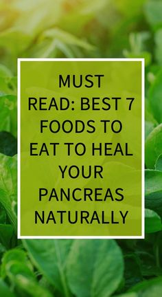 Must Read: Best 7 Foods To Eat To Heal Your Pancreas Naturally – World Of Healthy Life Natural Teething Remedies, Natural Cold Remedies, Herbal Cure, Herbal Remedies, Health Tips, Health And Wellness, Health Benefits, Health Care