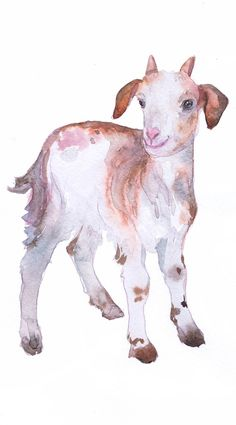 Baby Goat Art Farm Nursery Decor Watercolor Gifts Painting Print Boy Girl Nursery Wall art Animal Portrait Gift ideas Animals Prints high quality fine art print of my original watercolor painting. It is the work of a watercolor series Portraits of the Heart Size paper: 14,8 × 21cm,5 4/5 × 8 1/4, A5 (with white borders) - 8.00 $ 21 cm x 29,7 cm, 8 1/4 x 11.5/8, A4.(with white borders) - 18.00 $ 29,7cm × 42cm, 11,69 × 16,54, A3(with white borders) - 36.00 $ Other dim...
