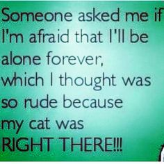 Someone asked me if I'm afraid that I'll be alone forever, which I thought was so rude because my cat was RIGHT THERE!!!
