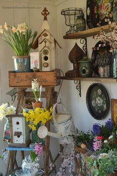 Spring on a ladder! | Home is Where the Boat Is #pottingshed