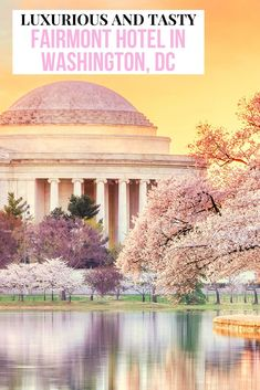 The next time you visit Washington, D.C. be sure to check in to the Fairmont Hotel. You will receive all the luxury amenities you've come to expect from the Fairmont plus a tasty restaurant and a terrific location. Located within walking distance of many of the Smithsonian Museums this hotel is one not to miss. Click our link for all the luxurious details. #FairmontHotel #WashingtonDC