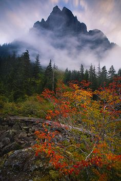 ~~Piercing the Sky ~ autumn engulfed in clouds at Barclay Lake, between Merchant Peak and Baring Mountain, Cascades, Washington by Trevor Anderson~~