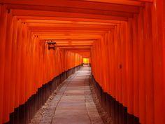 "The shrine of Fushimi Inari Taisha.  There are the extremely strange Senbon-Torii ""many lining footpaths""."
