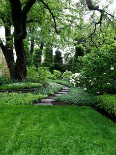 A perfectly manicured garden.
