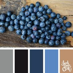 Blueberries color Inspiration | Click for more color combinations and color palettes inspired by the Pantone Fall 2017 Color Trends, plus other coloring inspiration at http://sarahrenaeclark.com | Colour palettes, colour schemes, color therapy, mood board, color hue