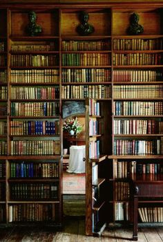 I will have a library in my home