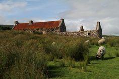 Abandoned cottage, County Mayo