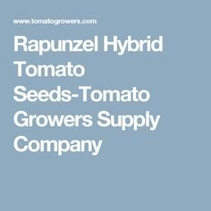 Rapunzel Hybrid Tomato Seeds-Tomato Growers Supply Company