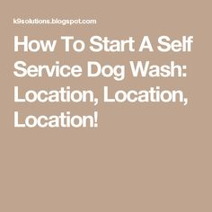 41 catchy pet grooming business names pinterest pet grooming how to start a self service dog wash location location location solutioingenieria Images