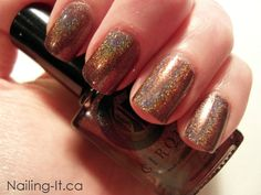 Cirque Mink from the Alchemy Collection. Chocolate brown holographic nail polish.