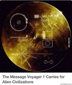 The golden record! It's flying through space in hope of being found by aliens to reveal our existance