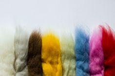 merino wool from alentejo // lã merino alentejana via Saber Fazer. Click on the image to see more!