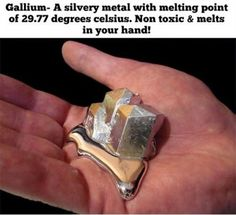 Gallium. Melting point.