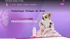 Toilettage Pelage de Soie