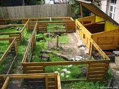 Holy wow this would be amazing except it has no cover :( Meerschweinchen Aussengehege, guinea pig outside enclosure