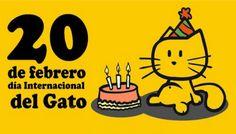 Mascotas, animalistas, animales, proteccionistas, veterinarios, gatos, dia internacional del gato, amantes de las mascotas, mascotas nebraska, mascotas omaha