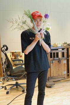 Sun flower Sehunnie