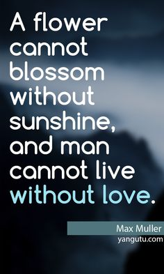 A flower cannot blossom without sunshine, and man cannot live without love, ~ Max Muller <3 Love Sayings #quotes, #love, #sayings, https://apps.facebook.com/yangutu
