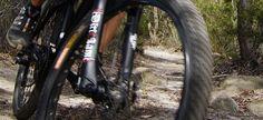 Mountain Biking at Manly Dam Mtb, Mountain Biking, Circuit, Sydney, Bicycle, Bike, Bicycle Kick, Trial Bike, Bicycles