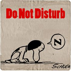 Do Not Disturb Snoopy❤️Sleepy. Peanuts Cartoon, Peanuts Snoopy, Snoopy Love, Snoopy And Woodstock, Peanuts Characters, Cartoon Characters, Joe Cool, Snoopy Quotes, Charlie Brown And Snoopy