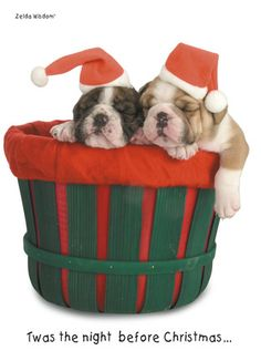 """Santa Cap Puppies - Zelda Wisdom - Christmas Card. St. Nicholas will be there soon! Send this amusing card to wish a Merry Christmas to all, and include a message inside. 5"""" x 7"""" Folded Card. Price: $2.99"""