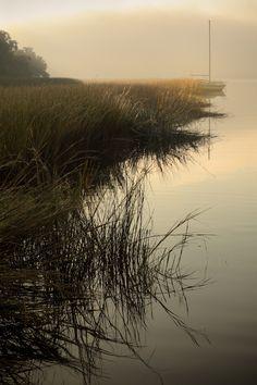 Morning Along the Marsh, Ashley River, Charleston, SC © Doug Hickok All Rights Reserved