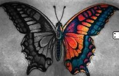 Really good symbolization of bipolar disorder or mental illness, the ups and downs, dark vs light