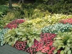 Rachel, i'd like to have clusters of colors like this so the different types of plants pop out to the eye, even while all bundled together!