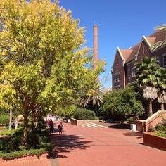 #11 - Florida State University | 21 of the Most Beautiful College Campuses In America