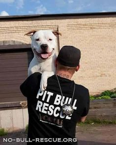 No Bull Rescue