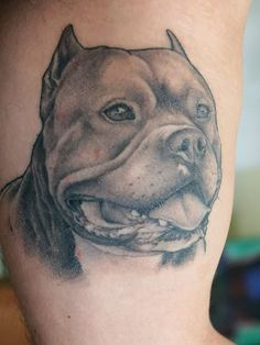 Check out some super design of Pitbull Tattoos! Cool ideas and picture of Top Pitbull Tattoo styles! Pitbull Tattoo, Bull Tattoos, Animal Tattoos, Gangster Tattoos, Tatouage Pit Bull, Tattoo Perro, American Bully, Design Tattoo, Desenho Tattoo