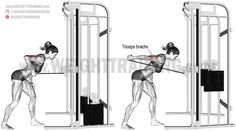 Cable triceps kickback. An isolation exercise. Target muscle: Triceps Brachii. Synergistic muscles: None.