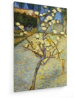 Vincent Van Gogh - Pear Tree in Blossom #vincentvangogh #weewado #artist #art #canvasart #framedart