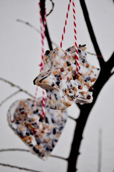 Bird Food Trailer – Anleitung von Miss Homemade - DIY Selber Machen Winter Crafts For Kids, Diy For Kids, Christmas Ornament Crafts, Christmas Crafts, Bird Suet, Bird Feeder Craft, Food Trailer, Bird Food, Diy Art