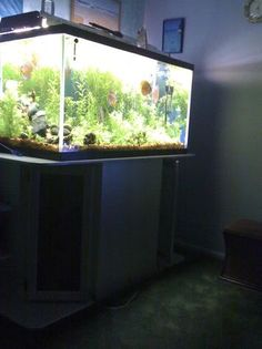 Top fin 150 gallon black aquarium with canopy light and for Aquariums for sale near me