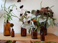 Different styles and heights of 9 amber bottles. Can also be used as bud vases and stem vases. Brown Glass Bottles, Amber Bottles, Amber Glass, Glass Jars, Wine Bottles, Perfume Bottles, Fall Flower Arrangements, Vase Arrangements, Seasonal Flowers