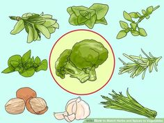 Match broccoli with sage, chives, oregano, thyme, rosemary, garlic, marjoram, and nutmeg