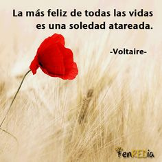 """""""La más feliz de todas las vidas es una soledad atareada"""" -Voltaire-  #frasescélebres #notas #citas #quote #positivo #redessociales #communitymanager #socialmediamarketing #socialmedia #sm #marketing #enredia"""