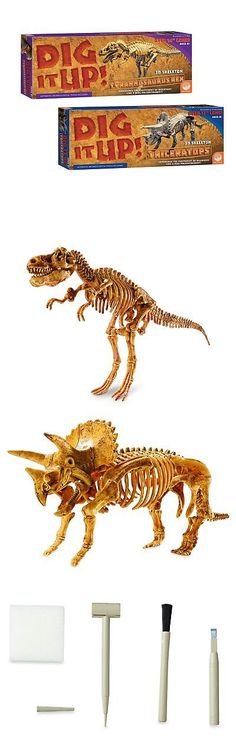 Animals and Nature 31744: Dig It Up! T-Rex And Triceratops: Set Of 2 -> BUY IT NOW ONLY: $48.72 on eBay!