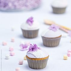 Spring cup cakes #spring #cupcakes #hydrangea #lilac