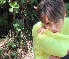 Huang Renjun, Taeyong, K Idols, Nct Dream, Profile Pictures, Cute, Tech, Icons, Kawaii
