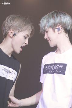 151121 EXO Xiumin & Baekhyun (cr: KIMFOXY)