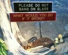 Every zoo should have these
