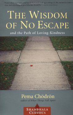The Wisdom of No Escape and the Path of Loving-Kindness by Pema Chodron,http://www.amazon.com/dp/1570628726/ref=cm_sw_r_pi_dp_Psqesb0GATRHM698