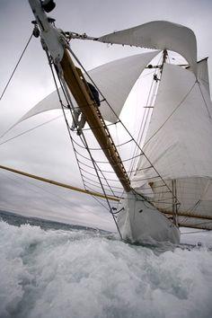 "sailing 'wing and wing' - ""Sail away, sail away, we will cross the mighty ocean and the Charleston bay . "" (Randy Newman ""Sail Away"") Yacht Design, Yacht Boat, Sail Away, Wooden Boats, Tall Ships, Water Crafts, Belle Photo, Sailing Ships, Sailing Boat"