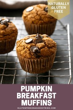 These healthy pumpkin breakfast muffins, with just a few chocolate chips, are freezer-friendly, lightly sweet, and naturally gluten free. Gluten Free Pumpkin, Gluten Free Cookies, Gluten Free Desserts, Delicious Desserts, Gluten Free Potluck, Vegan Pumpkin, Healthy Desserts, Healthy Recipes, Gf Recipes