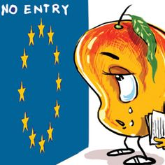 European Union bans import of mangoes from India