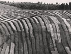 Martin Martinček - Liptovské variácie II.-okolo 1965 Nostalgia, Landscape, History, Wood, Rarity, Homeland, Photography, Grass, Stripes