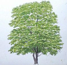 Baum Malen