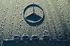 1957 Mercedes Benz Roadster Emblem - Car Images by Jill Reger Mercedes Sport, Mercedes S Class, Mercedes Benz Logo, Vintage Romance, Maybach, Car Images, Car Photography, Bmw Logo, Sport Cars